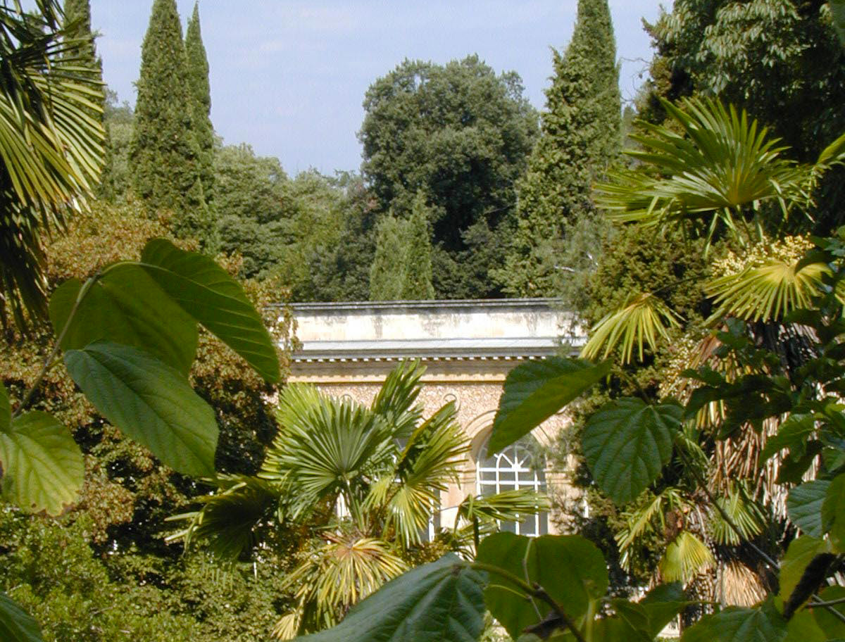 Le jardin des plantes montpellier tourist office for Plante de jardin